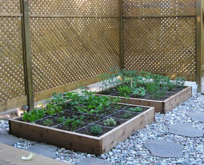 Building raised beds square foot gardening