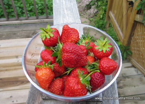 growing strawberries in a square foot garden