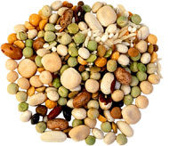 healthy foods beans