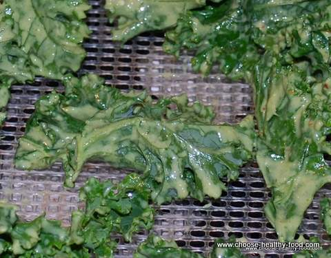 raw organic kale chips in dehydrator